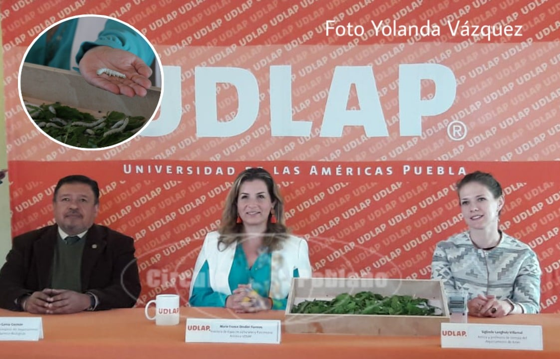 Capilla Del Arte de UDLAP presentara exposición Bombyx MoríMicrotejidos.